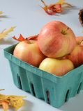 Gala apples. A container of ripe gala apples on a table with autumn leaves Stock Photo