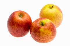 Gala apples over white background. Stock Image