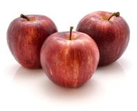 Gala Apples. Three whole Gala apples isolated on white background Stock Images