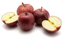 Gala apples isolated on white background Stock Images