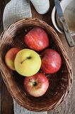 Gala and Golden Delicious apples in a basket. Healthy snack. Gala and Golden Delicious apples in a basket. Healthy snack for children. Favourite fruits. View Royalty Free Stock Image
