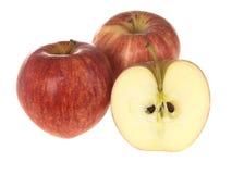 Gala-Äpfel Lizenzfreies Stockbild