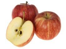 Gala-Äpfel Lizenzfreie Stockbilder