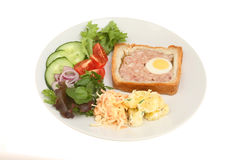 Gala pie and salad. On a plate isolated against white Stock Photography
