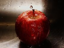 Gala Red Apple Royalty Free Stock Photos