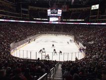 Free Gala River Area Home Of The Phoenix Coyotes. Royalty Free Stock Photo - 81844525