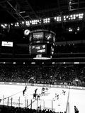 Gala River Area home of the Phoenix Coyotes. Royalty Free Stock Images
