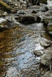 Galamus峡谷的,比利牛斯orientales河在法国 图库摄影