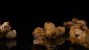 Galangal για το μαγείρεμα αρωματικών ουσιών στο μαύρο υπόβαθρο απόθεμα βίντεο
