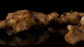 Galangal για το μαγείρεμα αρωματικών ουσιών στο μαύρο υπόβαθρο φιλμ μικρού μήκους