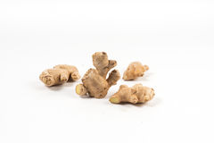 Galangal  healthy herb Royalty Free Stock Photo