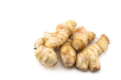 Galangal. Royalty Free Stock Photos