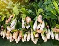 Galangal, lemongrass, kaffir lime leaves. Royalty Free Stock Photo