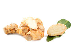 Galangal root, kaffir lime leaves Stock Photography