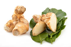Galangal root, kaffir lime leaves royalty free stock images