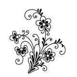 Galanteryjny kwiat Fotografia Royalty Free