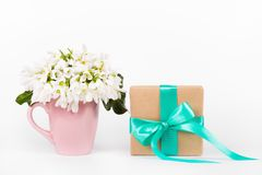 Galanthus on white background. Bouquet Galanthus. White flowers and gift box stock photography