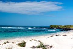 Galapagos παραλία Στοκ Φωτογραφία
