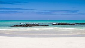 galapagos όψη θάλασσας Στοκ φωτογραφία με δικαίωμα ελεύθερης χρήσης