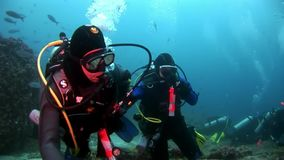 Scuba divers underwater on background of school fish. Galapagos, Ecuador - 17 May 2008: Scuba divers underwater on background of school fish. Unique beautiful stock video footage