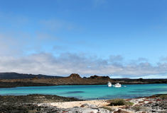 Galapagos Island Beach Stock Image