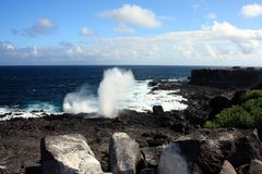 Galapagos islands Stock Photography