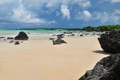 Galapagos islands beach Stock Photo