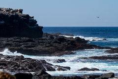 Galapagos Islands Seascape Stock Photography