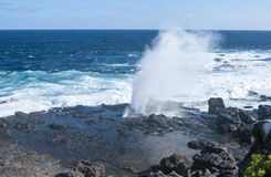 Galapagos islands. Seascape volcanic royalty free stock photo