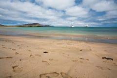 Galapagos plaża Zdjęcie Stock