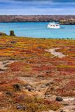 Galapagos sea view Royalty Free Stock Images