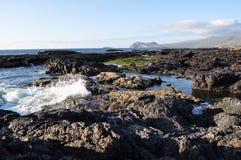 Galapagos Splash Stock Image