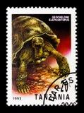 Galapagos Tortoise Geochelone elephantopus, Reptiles of Tanzania serie, circa 1993. MOSCOW, RUSSIA - JANUARY 2, 2018: A stamp printed in Tanzania shows Galapagos Royalty Free Stock Photo