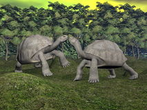 Galapagos tortoises kiss - 3D render Royalty Free Stock Images