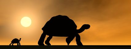 Galapagos tortoises mum and child - 3D render. Shadows of mum galapagos tortoise showing the way to its child by sunset Royalty Free Stock Photos