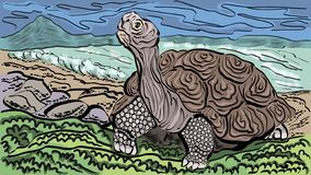 Galapagos Turtle on the ocean stock illustration