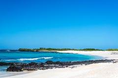 Galapagos White Sand Beach Royalty Free Stock Photo