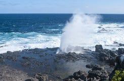 Galapagos wyspy zdjęcie royalty free
