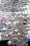Galaretowa mrowie sztuka przy Krajowym akwarium w Baltimore zdjęcia royalty free