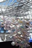 Galaretowa mrowie sztuka przy Krajowym akwarium w Baltimore fotografia stock