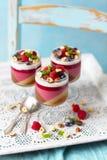 Galaretowy deser z różnymi warstwami: kawa, czekolada, malinki, kokosowy mleko fotografia stock