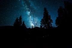 Galassia della Via Lattea sopra gli alberi Fotografie Stock Libere da Diritti