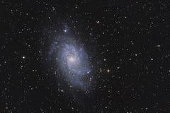 Galassia M33 fotografie stock libere da diritti