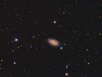 Galassia a spirale esclusa M109 fotografie stock