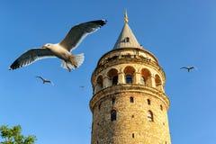 Galata塔,伊斯坦布尔,土耳其 免版税图库摄影