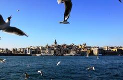 Galata Kontrollturm Lizenzfreie Stockfotografie