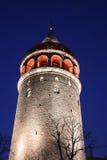 Galata Tower in Beyoglu, Istanbul City Stock Photo
