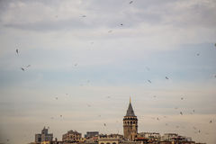 Galata Tower from Byzantium times in Istanbul. View of the Galata Tower from Byzantium times in Istanbul stock image