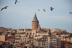 Galata Tower. A shot of the historic tower of Istanbul Stock Photos
