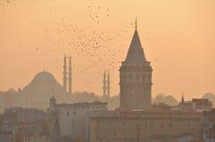 Galata-Turm u. Suleymaniye-Moschee stockfotografie